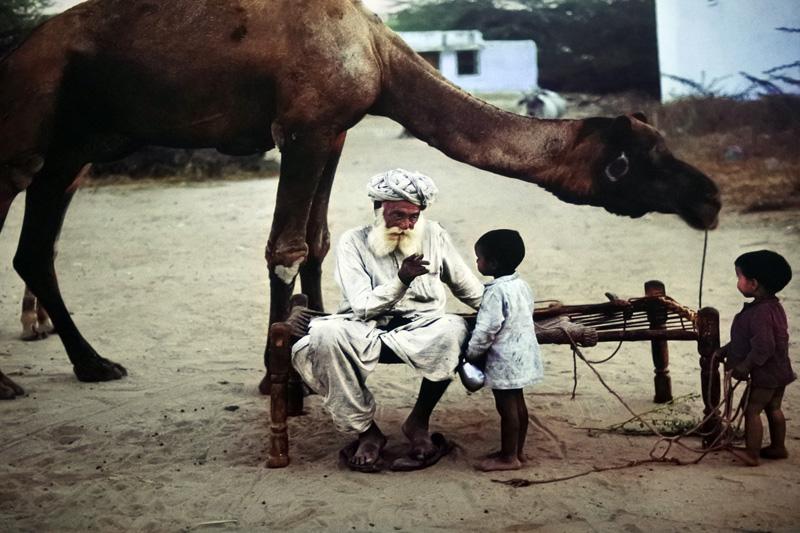 Jodhpur India, ©Steve McCurry