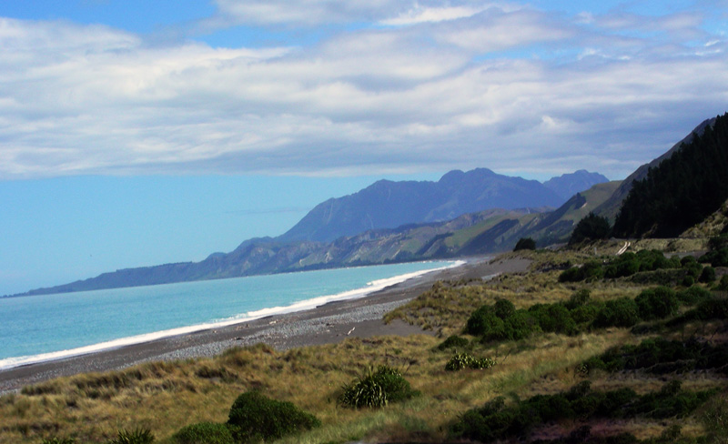 Coast of South Island - New Zealand