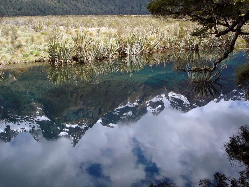Mirror Lake - South Island - New Zealand